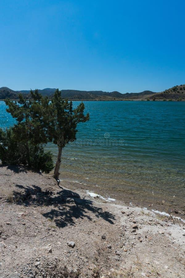 Vertikale Ansicht von Bill Evans Lake im New Mexiko stockfotografie