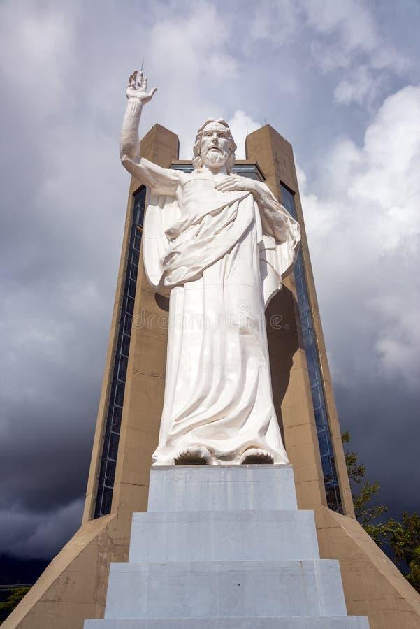 Vertikale Ansicht von Jesus lizenzfreie stockfotografie