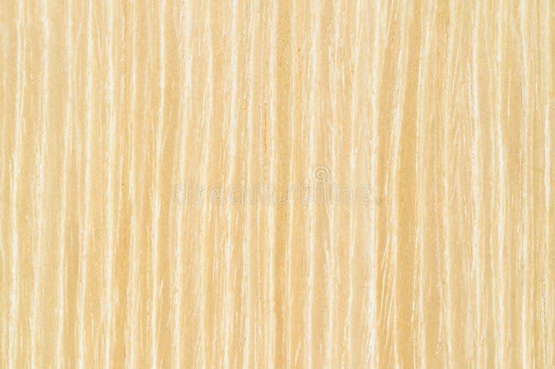 Vertikale Beschaffenheit des hellbraunen Eichenfurniers-blatt stockfoto