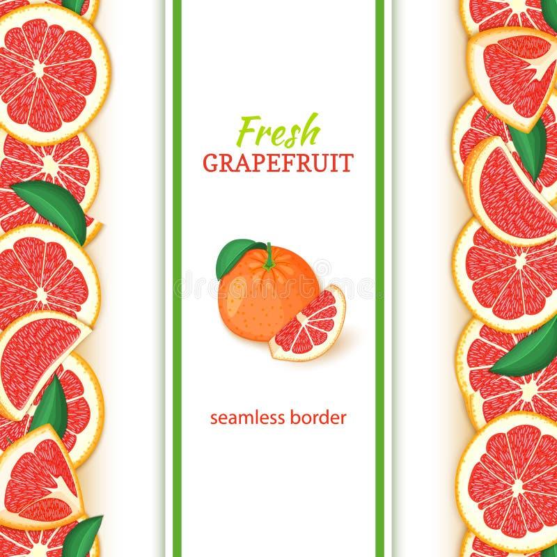 Vertikale nahtlose Grenzen der reifen Pampelmusenfrucht Vector breiten und schmalen endlosen Streifen der Illustrationskarte mit  lizenzfreie abbildung
