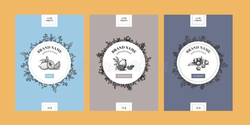 Vertikale Schablonen der Blumenverpackung mit Zitrone, Granatapfel und Blaubeere in umrissenem minimalem Design vektor abbildung