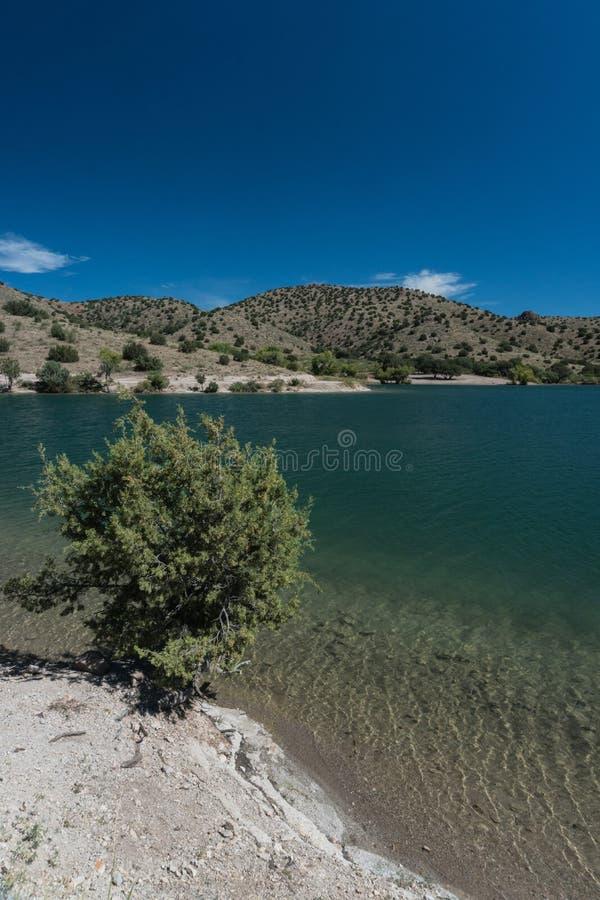 Vertikale von Bill Evans Lake-Ansicht in New Mexiko nahe silberner Stadt stockbild
