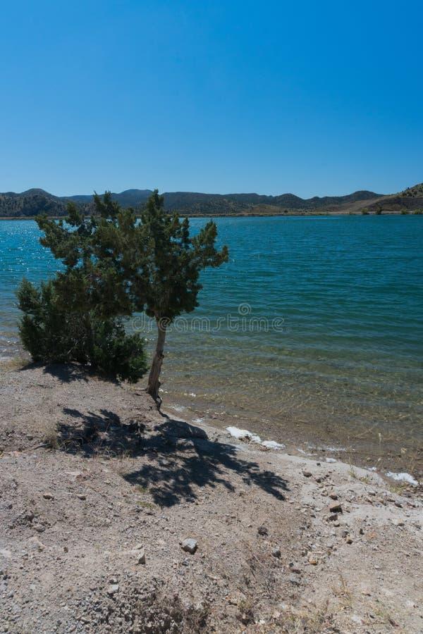 Vertikale von Bill Evans Lake im südlichen New Mexiko nahe silberner Stadt stockfoto