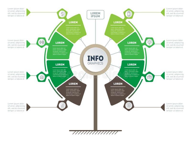 Vertikale Zeitachse Infographics Ökologieforschung Baum von develo vektor abbildung