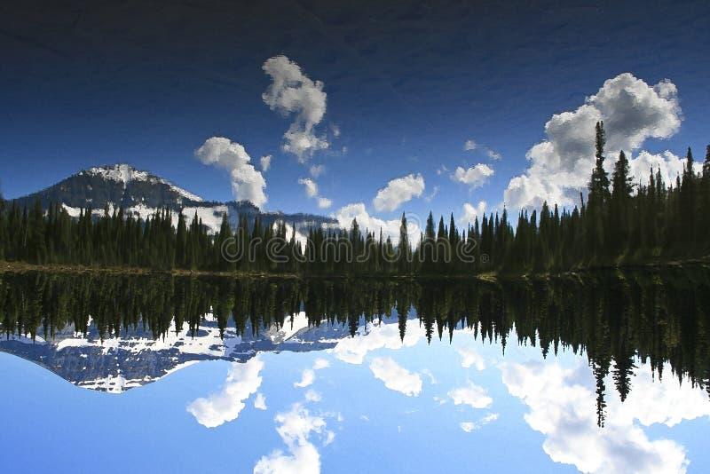 Vertikaler Aufbau der Bäume Bushers und Moutain, die im ruhigen See während des Sonnenuntergangs sich reflektieren stockfotos