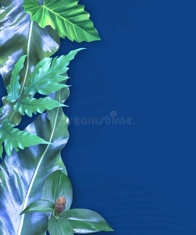 Vertikaler Einladungskartensatz mit tropischen Blättern stockbilder