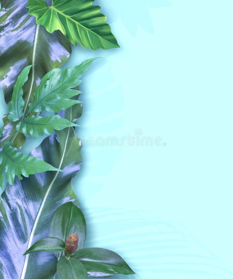 Vertikaler Einladungskartensatz mit tropischen Blättern stockfotografie