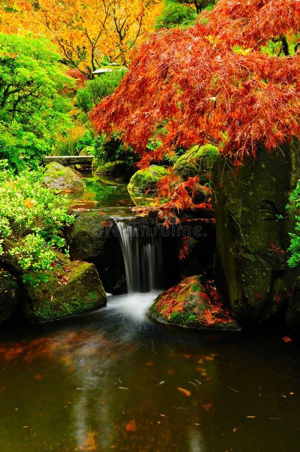 Vertikaler natürlicher Brunnen an einem Park während des Herbstes lizenzfreies stockbild