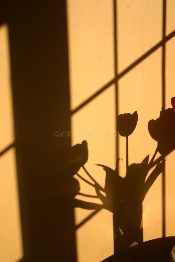 Vertikaler Schatten des Tulpeblumenblumenstraußes stockfotos