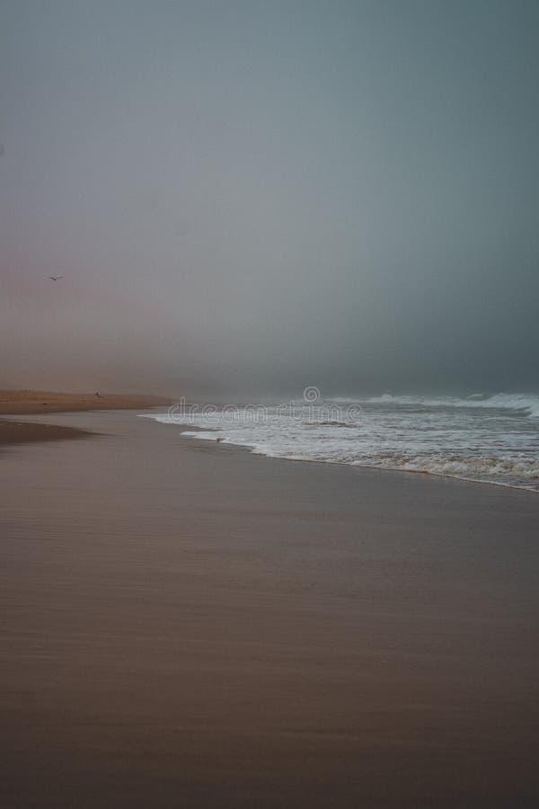 Vertikaler Schuss der Meereswogen einen sandigen Strand bedeckend lizenzfreie stockfotos