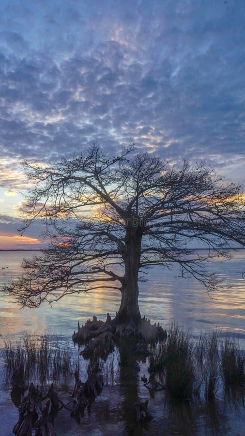 Vertikaler Sonnenuntergang Currituck-Ton in Duck North Carolina lizenzfreie stockfotografie