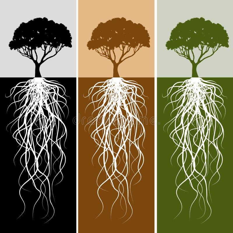 Vertikales Baum-Wurzel-Fahnen-Set lizenzfreie abbildung