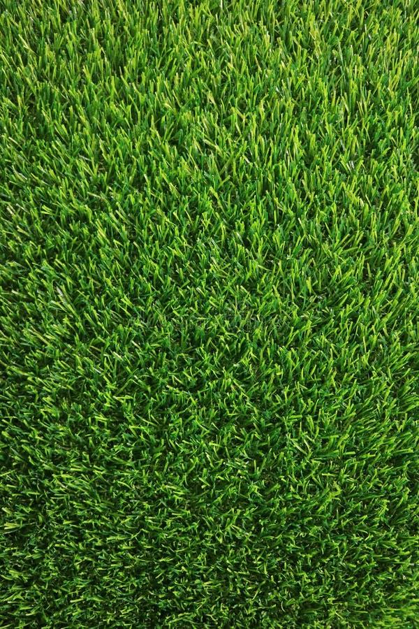 Vertikales Bild des üppigen grünes Gras-Rasens für Hintergrund stockbild