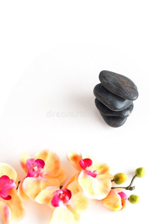 Vertikales Bild von Steinen und von Blumen auf einem weißen Hintergrund stockfotografie