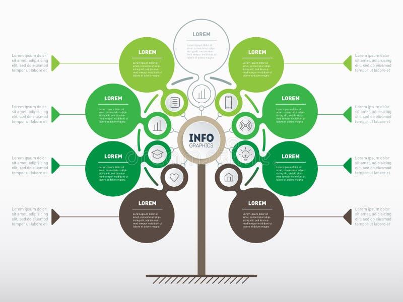 Vertikales infographics oder Zeitachse Baum der Entwicklung und des growt vektor abbildung