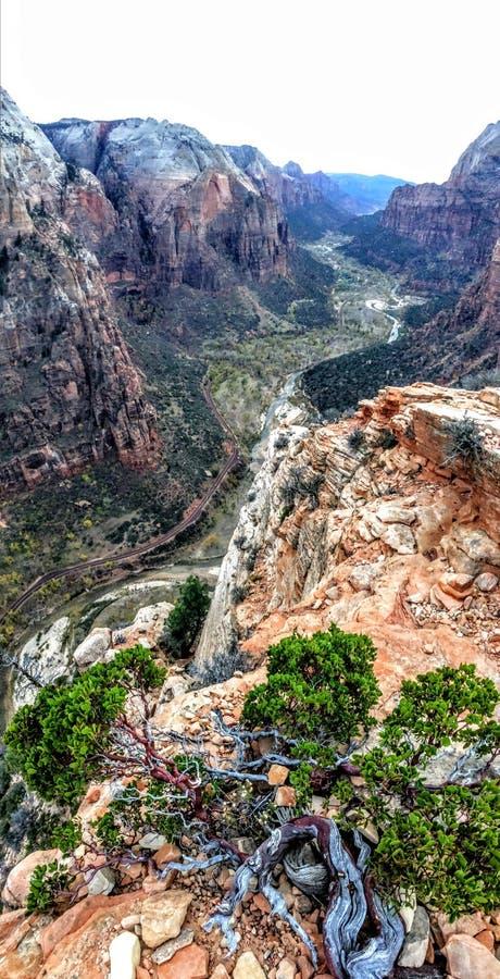Vertikales Panorama der Ansicht von den Engeln, die Zion& x27 landen; Nationalpark s stockfoto