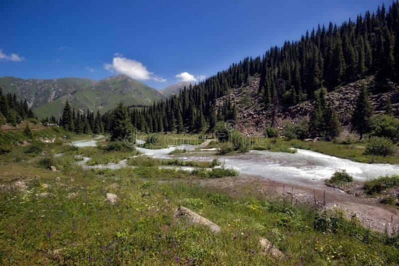 Vertikales Panorama von 3 HDR Bildern lizenzfreies stockfoto