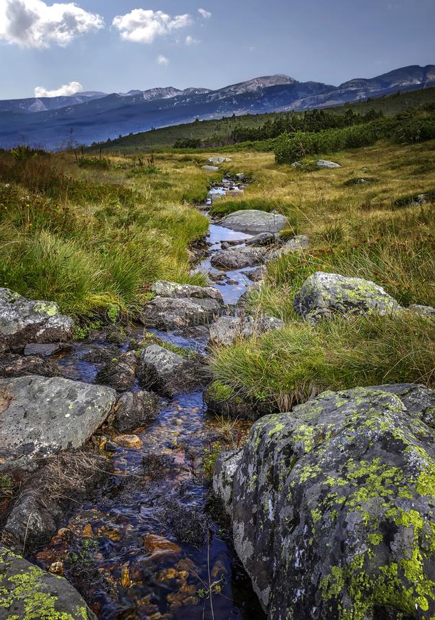 Vertikalt landskap för skönhet av en liten bergflod royaltyfri fotografi