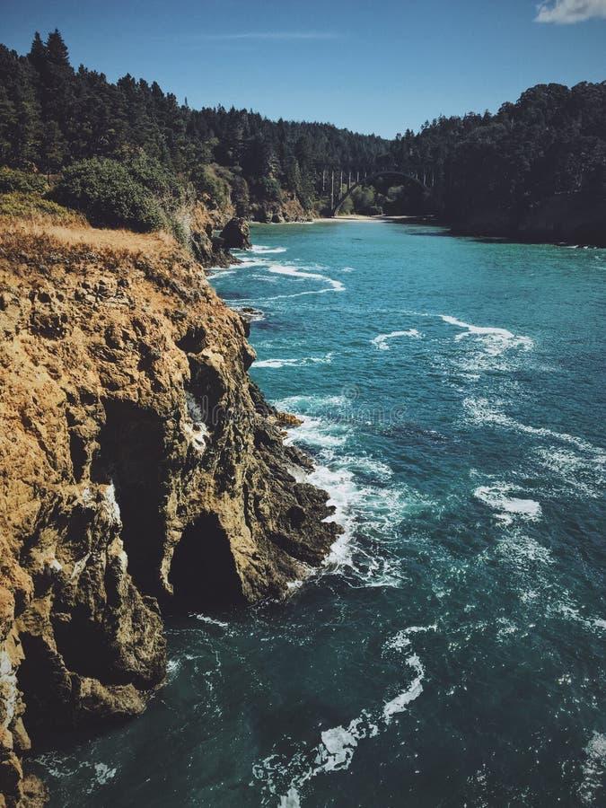 Vertikalt skott av en klippa nära en sjö med en skog i bakgrunden royaltyfri bild