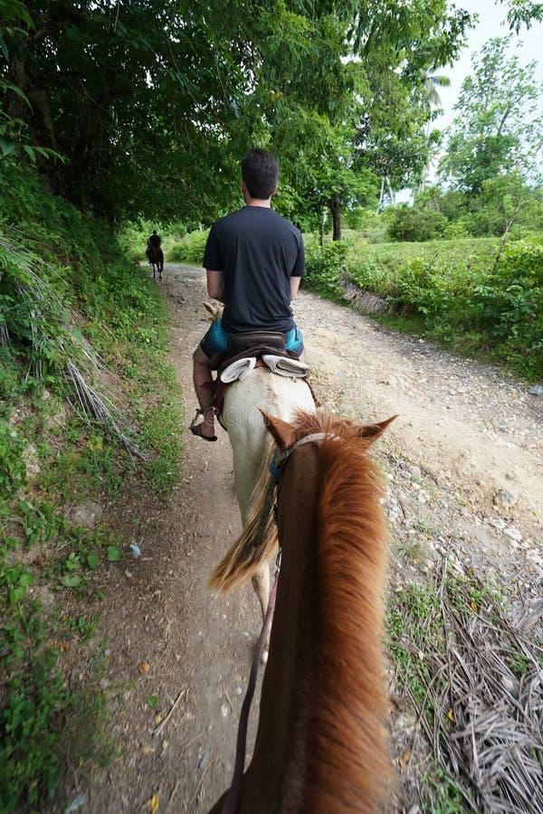 Vertikalt skott av en man som rider en häst på en bana i mitt av träd i Dominikanska republiken arkivbilder