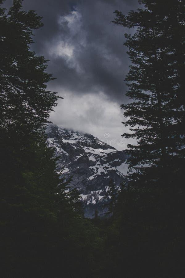 Vertikalt skott av högväxta träd med ett stenigt berg som täckas i insnöat mitt med mörka moln fotografering för bildbyråer