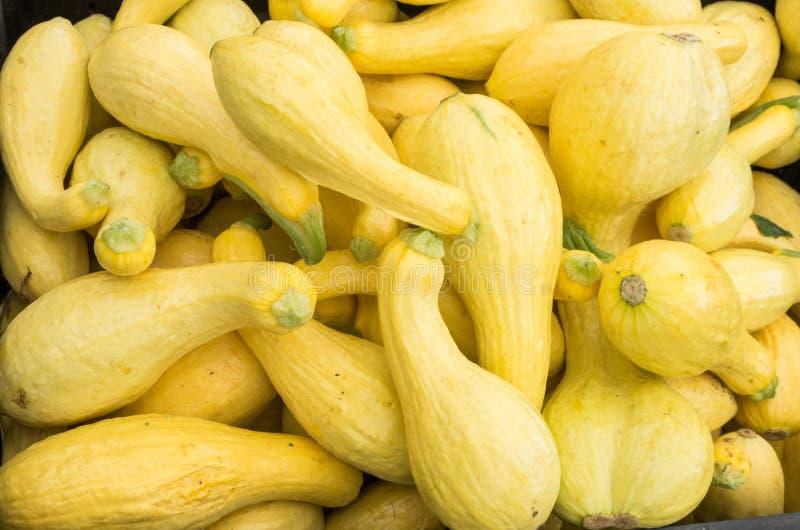 Vertoning van gele pompoen bij de markt royalty-vrije stock foto's