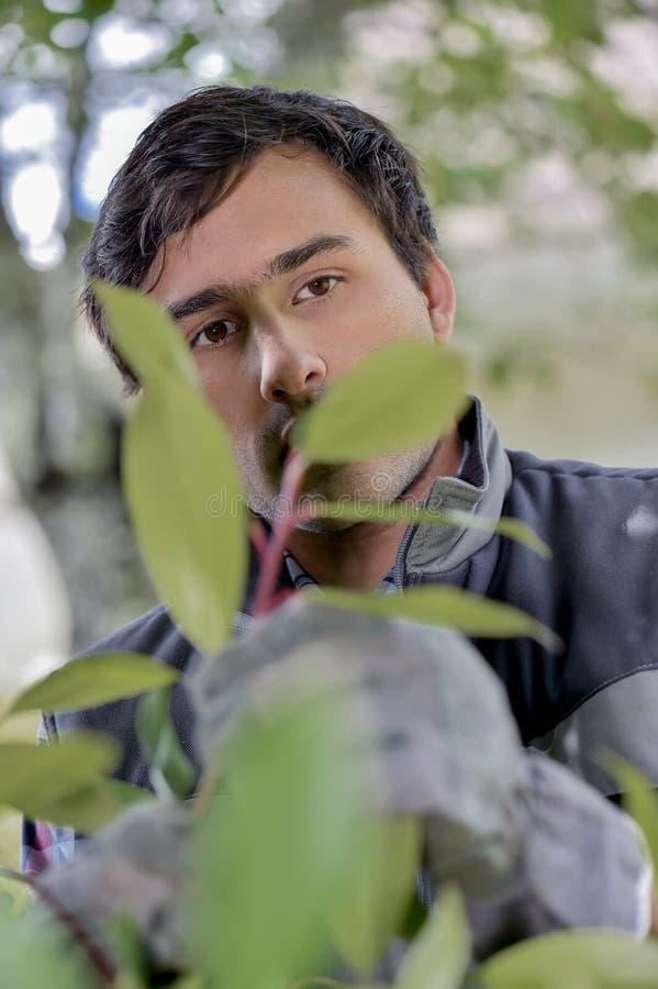 Vertreter, das vortäuscht, Gärtner zu sein stockfotografie