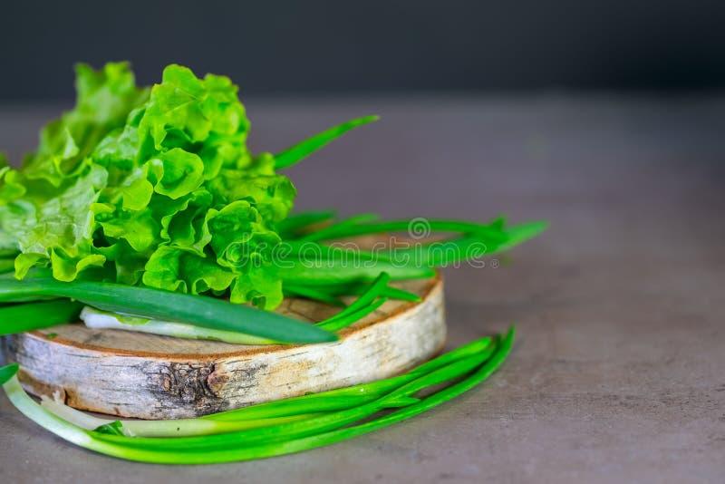 Verts pour la salade, l'aneth, les oignons frais et la laitue sur un fond gris photo libre de droits