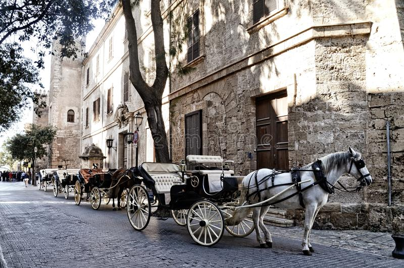 Vervoer en paard in Palma de Mallorca stock afbeelding