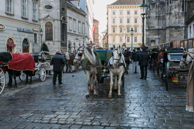 Vervoer met paarden en bestuurder die in Wenen op klanten wachten stock fotografie