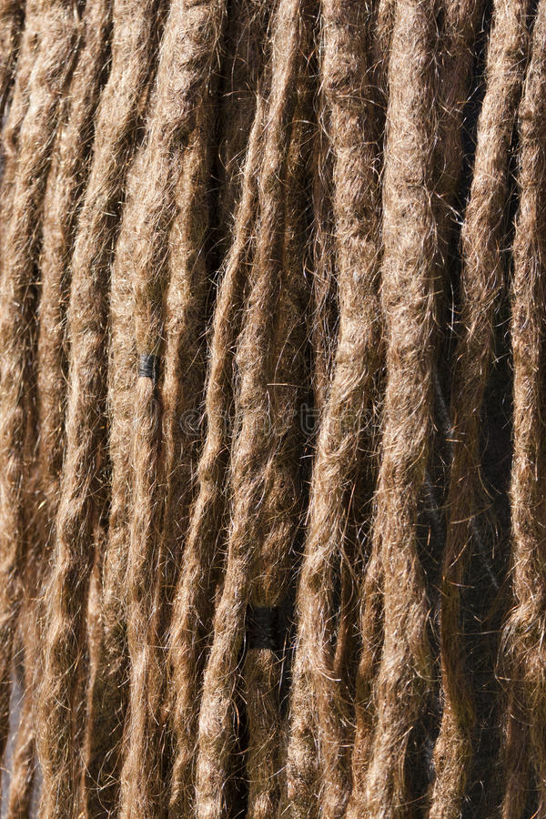 Verwarring van dreadlocks Close-up van een rastahaar royalty-vrije stock afbeeldingen