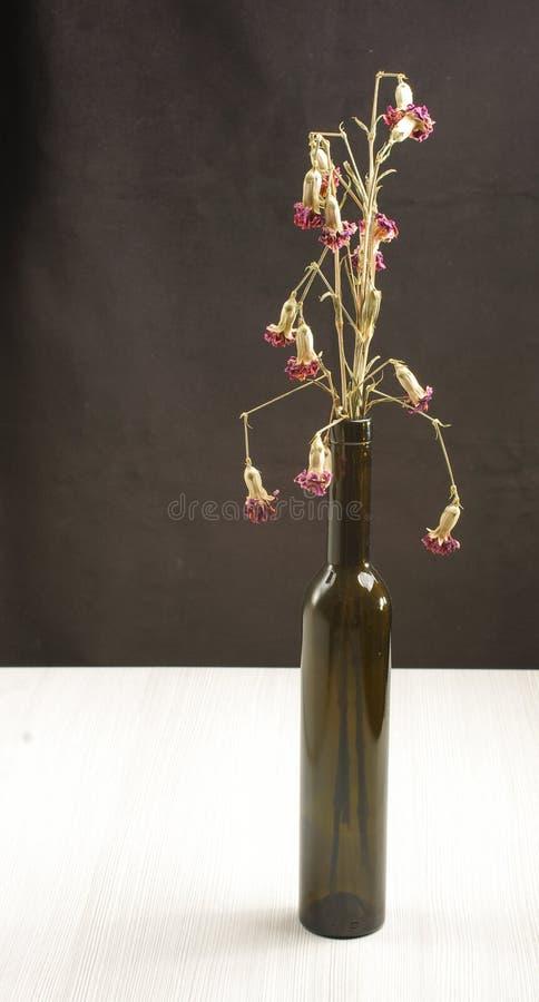 Verwelkte Gartennelkenblumen auf dem Holztisch stockfotografie