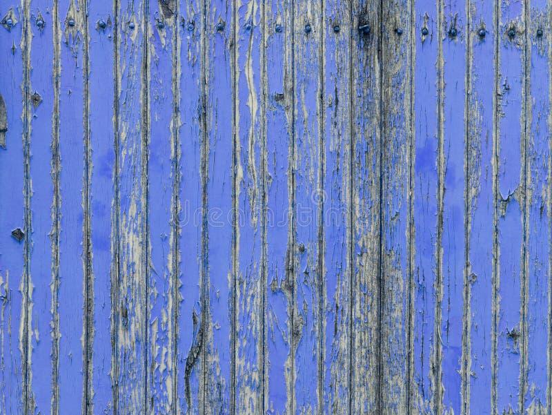 Verwelkte hölzerne Wand mit der Schale des Farbenlavendelblaus stockbilder