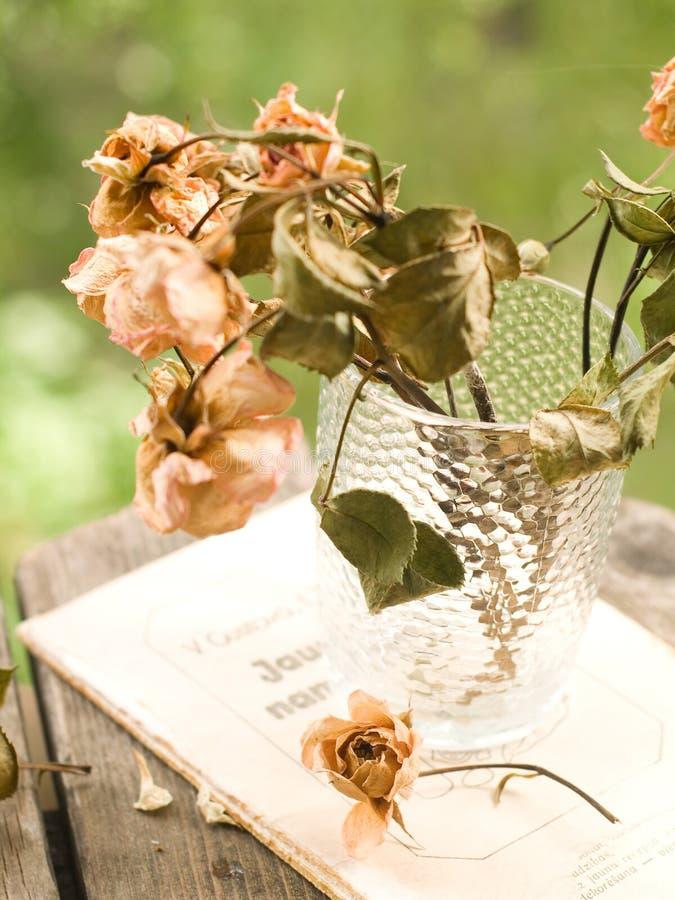 Download Verwelkte Rosen stockbild. Bild von trocken, blumenstrauß - 26352765