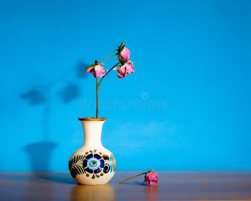 Verwelkte rozen tegen blauw royalty-vrije stock foto