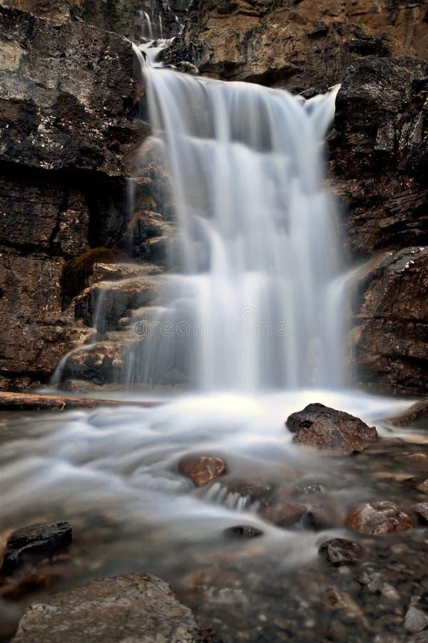 Verwicklung-Wasserfall Alberta Kanada stockfotos
