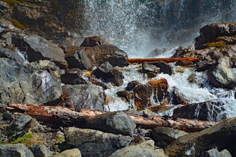 Verwicklungs-Nebenfluss-Wasserfälle in Jasper National Park, Alberta, Kanada lizenzfreie stockfotos