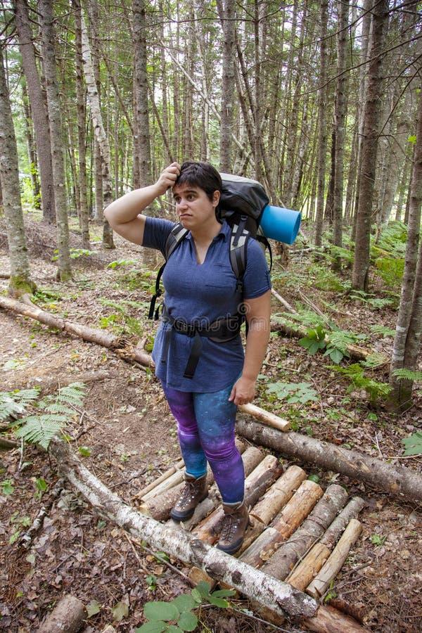 Verwirrt über den Wald lizenzfreie stockbilder
