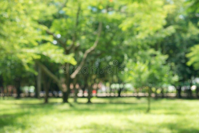 Verwischen Sie grünen Park der Natur mit bokeh Sonnenlicht-Zusammenfassungshintergrund Kopieren Sie Raum des Reiseabenteuers und  stockbild