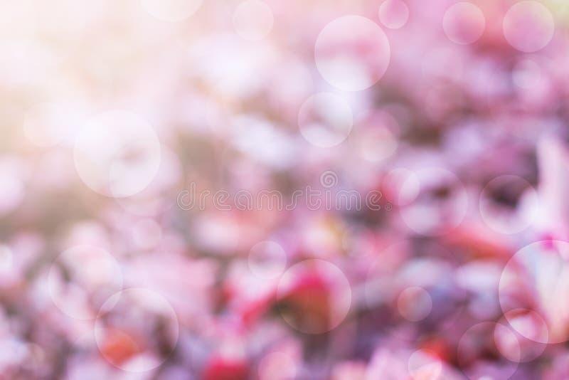 Verwischen Sie Purpur- und bokehhintergrund stockbilder