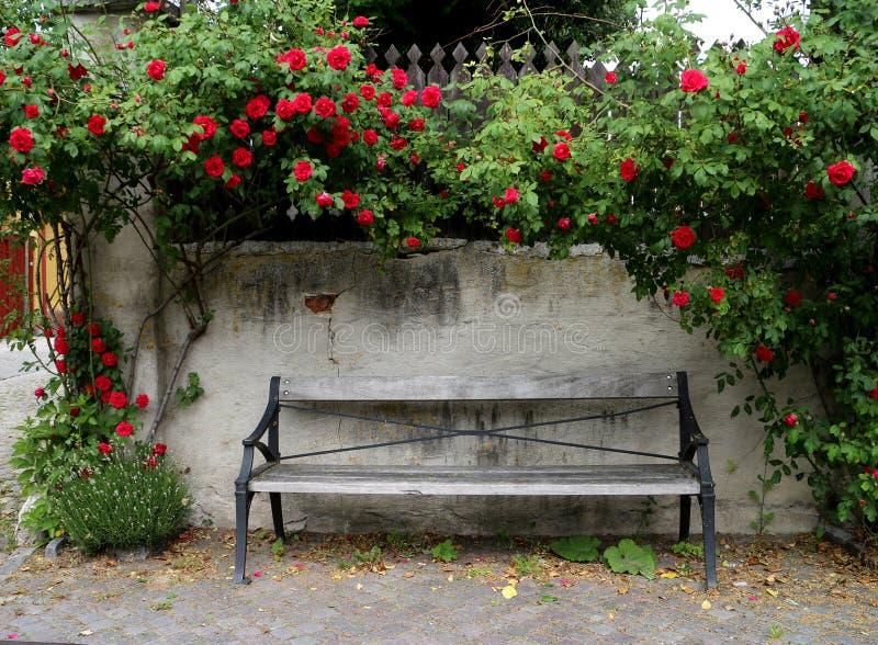 Verwitterte Parkbankstände vor einer Steinwand mit dem Klettern von roten Rosen stockbilder