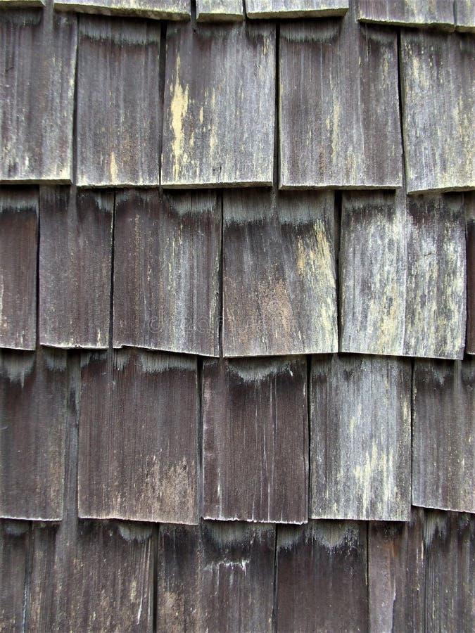 Verwitterte Zeder rüttelt auf der Seite eines Außengebäudes am Blockhaus-Erholungsort auf See-Halbmond im olympischen staatlichen lizenzfreie stockbilder