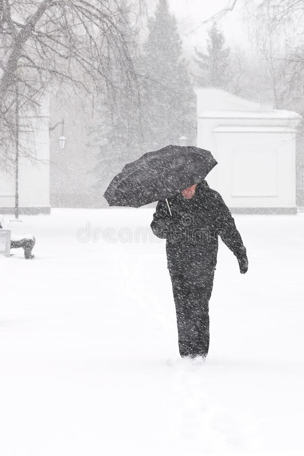 Very bad weather in a city in winter: heavy snowfall and blizzard. Male pedestrian hiding from the snow under umbrella, vertical. Very bad weather in a city in royalty free stock images