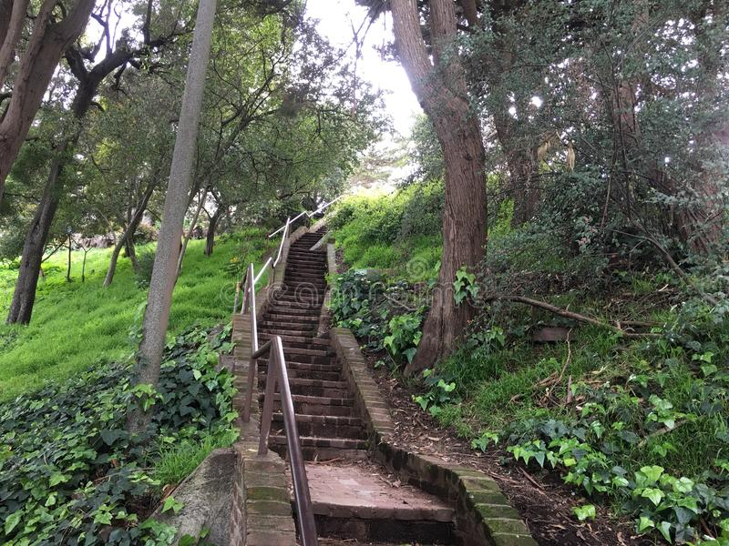 The very beautiful, barely known Greenwich steps, San Francisco, 1. royalty free stock images