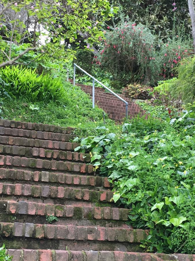 The very beautiful, barely known Greenwich steps, San Francisco, 2. stock image