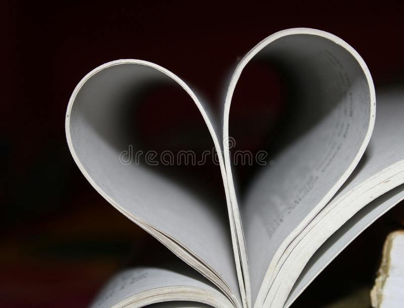 Very beautiful heart shape with white colour border and black background. Heart shape is symbol of love.The Heart is a very important organ in the body. It is stock image