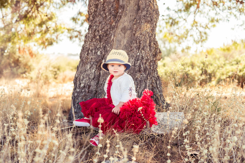 Very beautiful little girl in a beautiful dress stock images