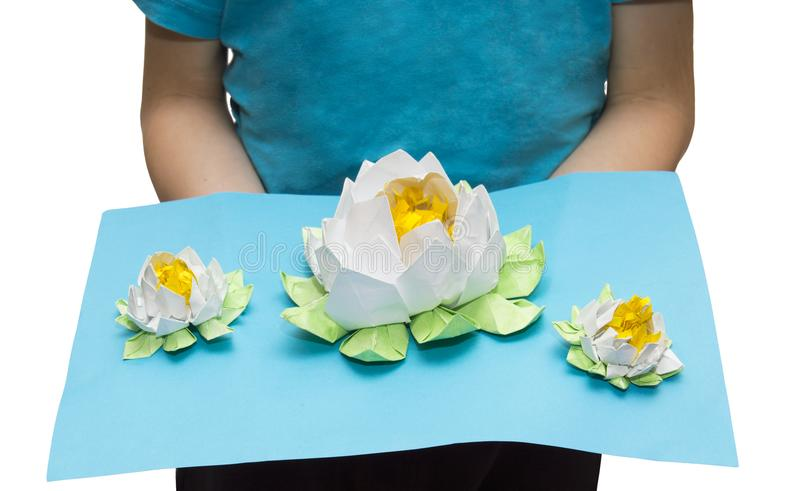 Very beautiful origami: three white lotuses on the lake stock images