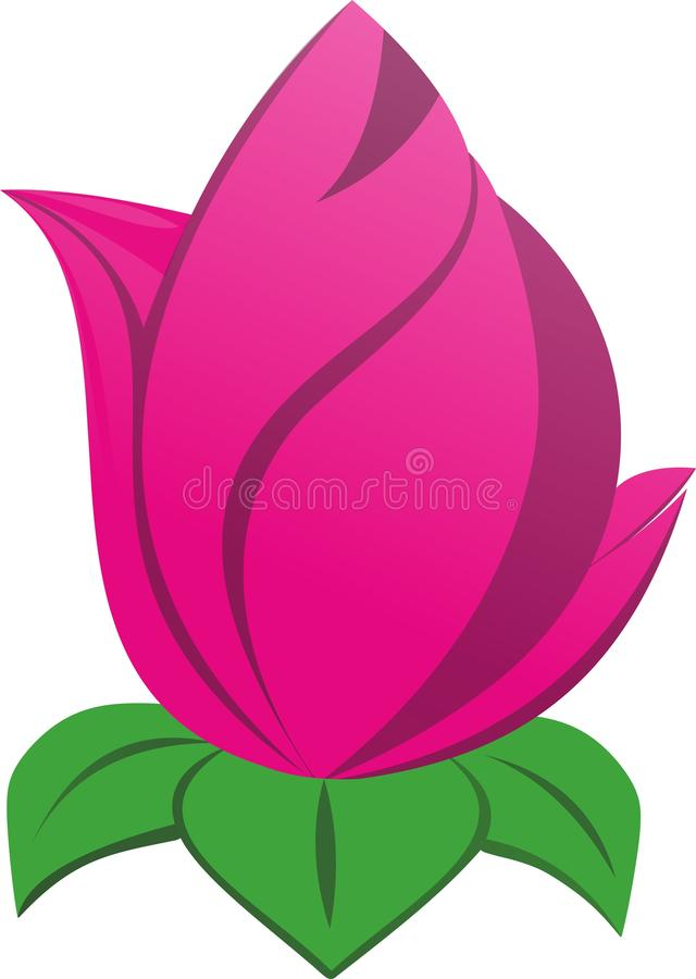 Very beautiful pink lotus royalty free illustration