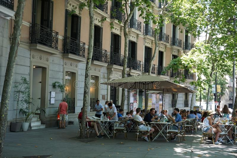 Old Madrid Cafe Oasis royalty free stock image